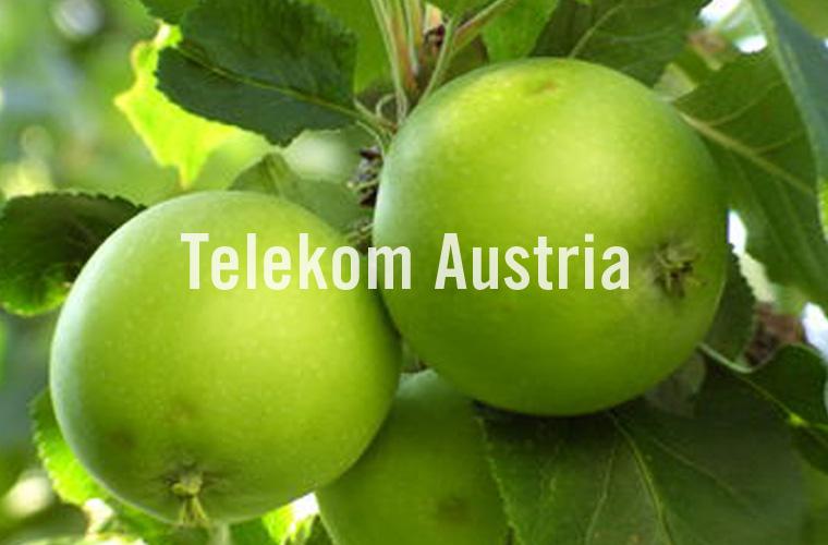 006 Telekom