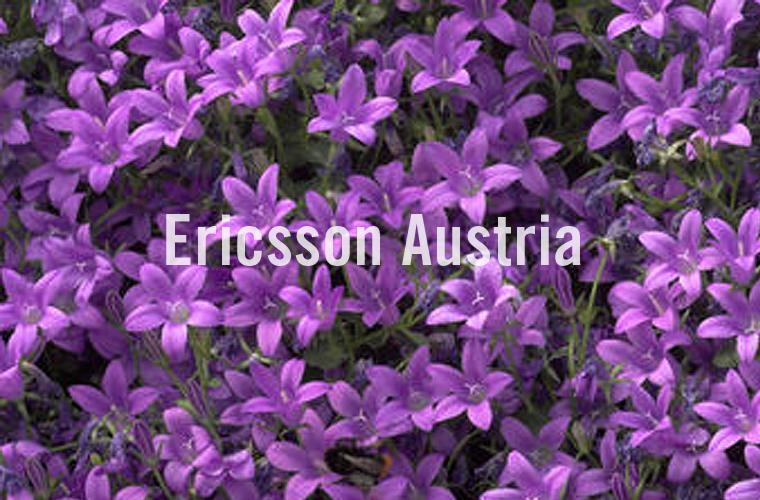 008 Ericsson